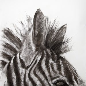 G de Lange Striped Horse Charcoal 700x1000mm
